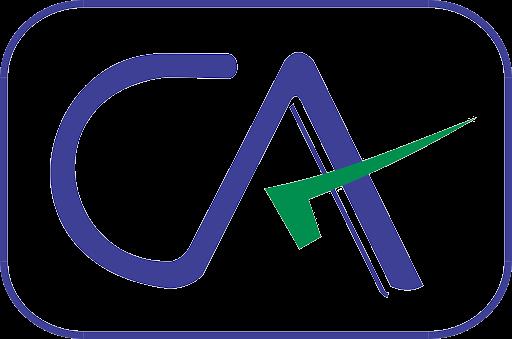 CA Inter mock test