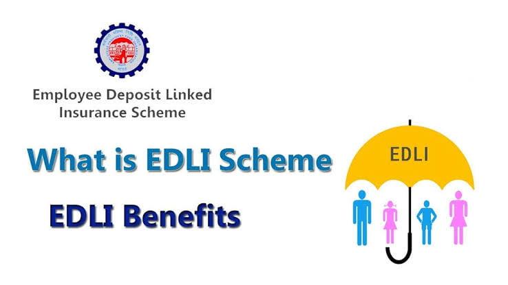employee deposit linked insurance